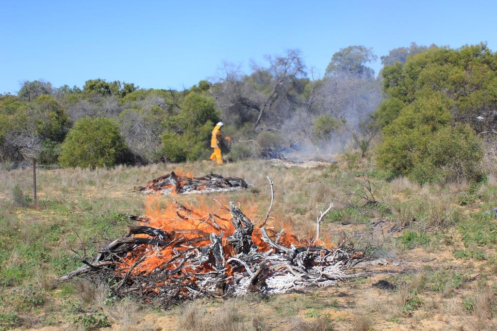 Partnership forged on back of biodiversity burns