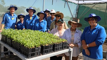 Grant funding secured for plant propagation e-Booklet