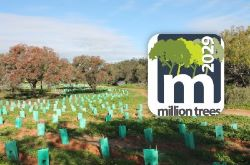 Million Trees Register